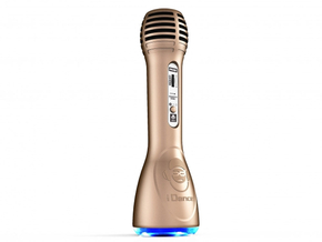 iDance Audio PM-6 Goud Bluetooth Party Karaoke Microfoon